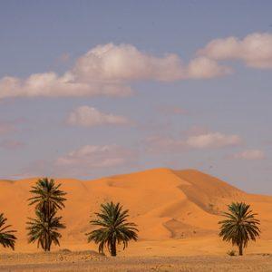 Ruta 14 Dias desde Casablanca Marrakech-Rutas desde Casablanca